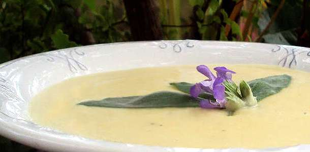 Sopa Espanhola de Alho