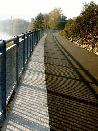 neuer Abschnitt des Donauradweges bei Linz