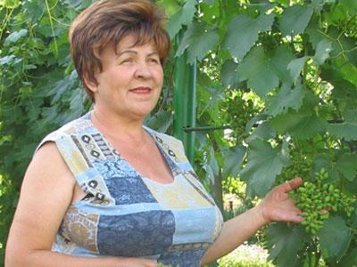 Фосфорно калийные удобрения для винограда