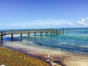 Beach on Islamorada Key