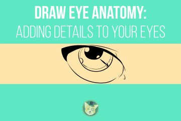 Draw Eye Anatomy - Adding Details to Your Eyes by Don Corgi