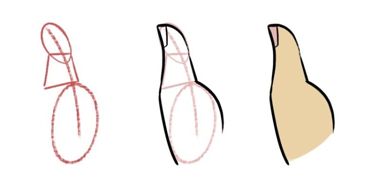 The thumb is drawn differently than the rest of the fingers, here's how you draw the thumb.