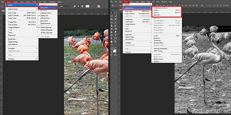 Here's how you can study the values of your images on a software of your choice!