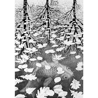 Three Worlds by M.C. Escher, negative space drawing example