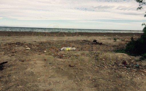 Playa Escollera Denia