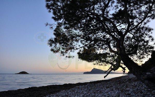 mar y montaña (6)