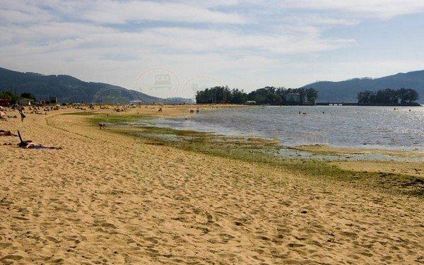 playa de cesantes (2)