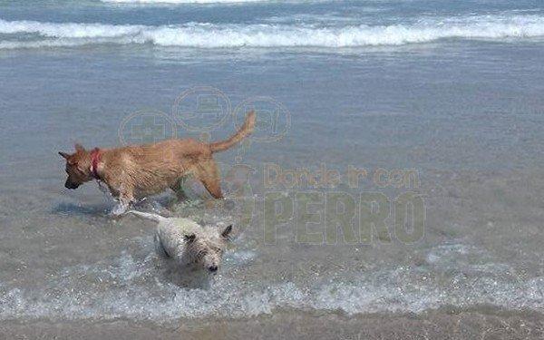 playa punta corveira (8)