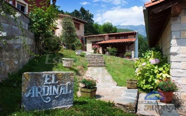 el ardinal asturias (2)