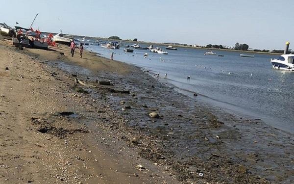 Playa de la Ría, Punta Umbría