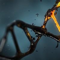 Donde se encuentra el ADN