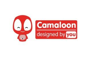 camaloon-image-fin