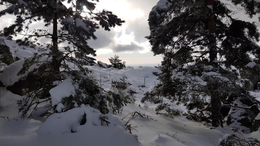 20160117_130437 (Copy) nieve