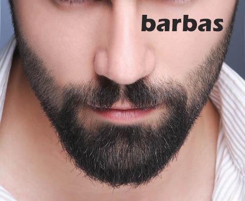 Tipos De Barba Clases