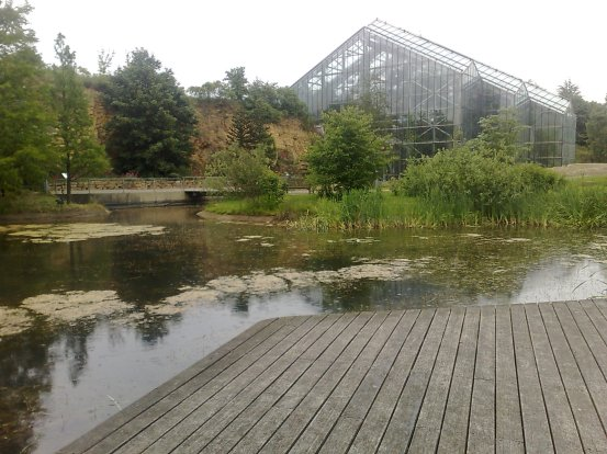 osnabruck-botanical-gardens-glass house