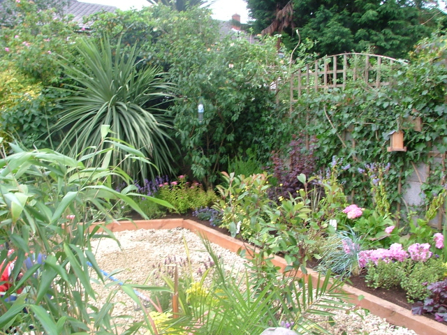Small gardens more ideas peter donegan landscaping ltd for Compact garden ideas
