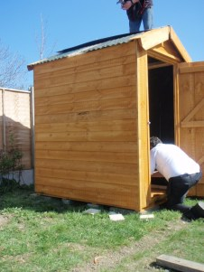 how to erect a shed