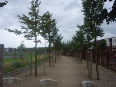 coultry park ballymun dublin