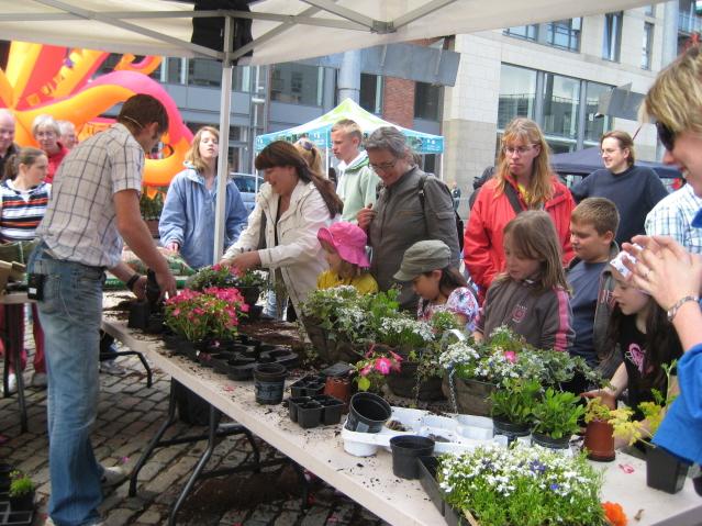 urban-garden-smithfield-garden peter donegan