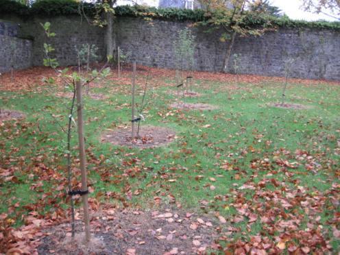 kilkenny-castle-gardens-52