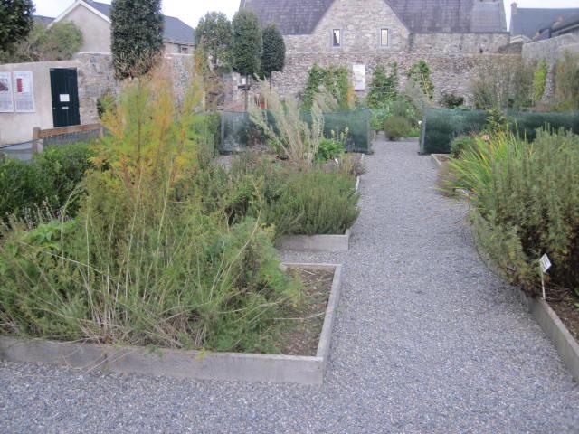 rothe-house-gardens-kilkenny-26