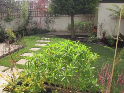 garden dublin (2)