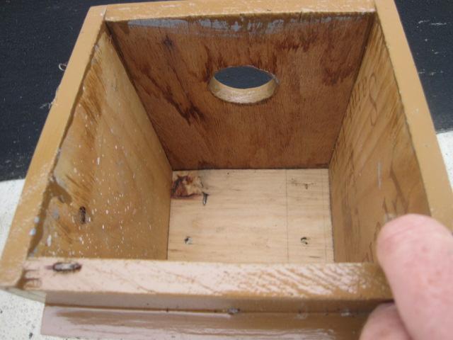 bird box (5)