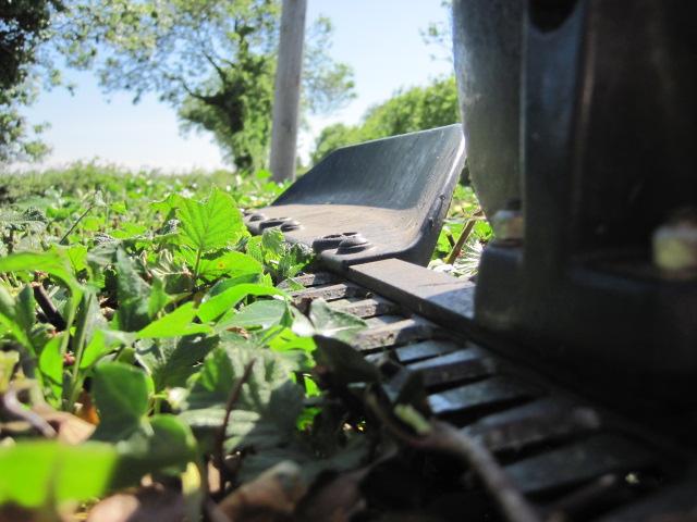 Garden maintenance peter donegan landscaping ltd dublin for Gardening qualifications