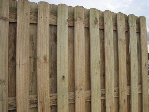 fencing 019