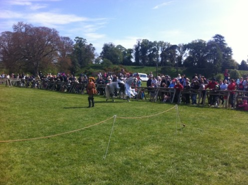 reenactments at oldbridge country fair (2)