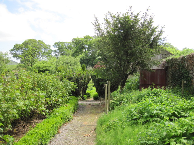 mornington house (28)