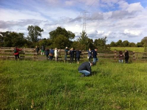 hedgerow walk heritage week 2011 (42)