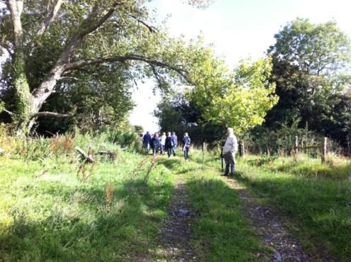 hedgerow walk heritage week 2011 (50)