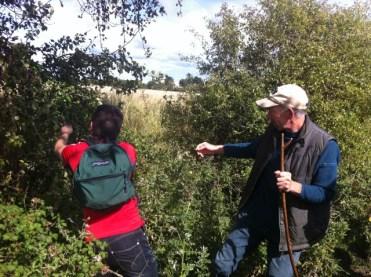 hedgerow walk heritage week 2011 (7)