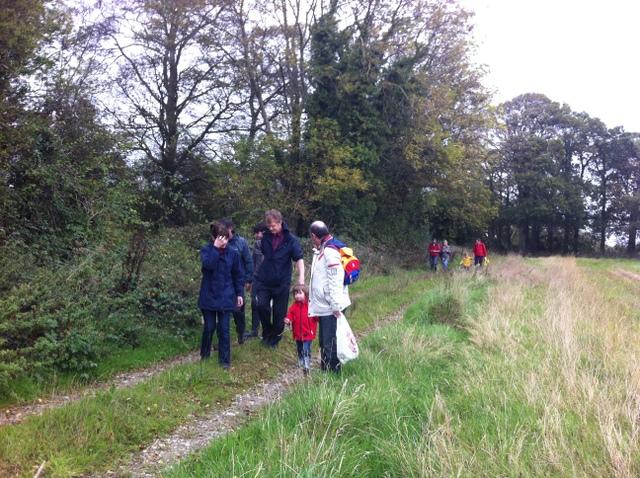 hedgerow walk peter donegan (10)
