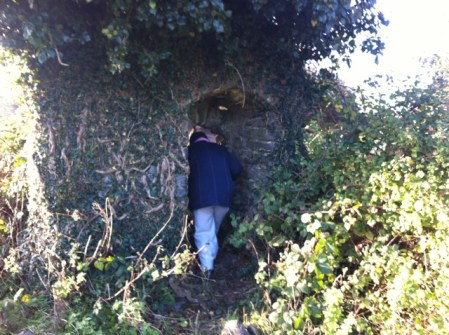 hedgerow walk grace dieu (32)