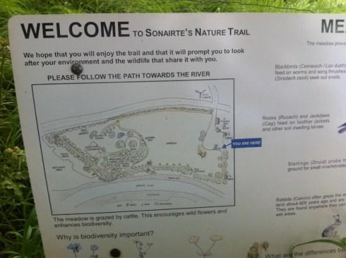 sonairte, nature walk
