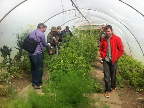 sonairte, garden group visit
