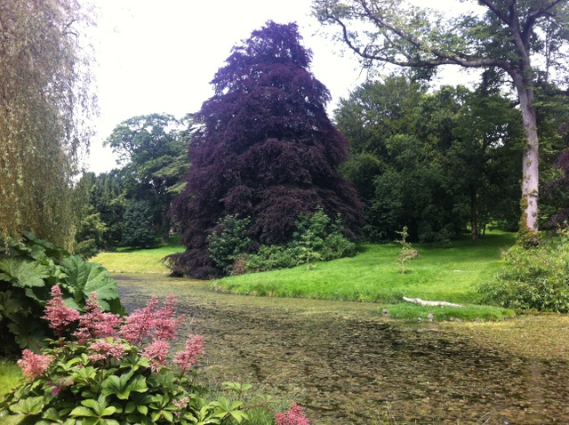 tullynally castle gardens (24)