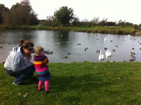 corkagh park (4)