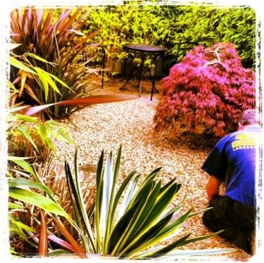 landscaping dublin, peter donegan