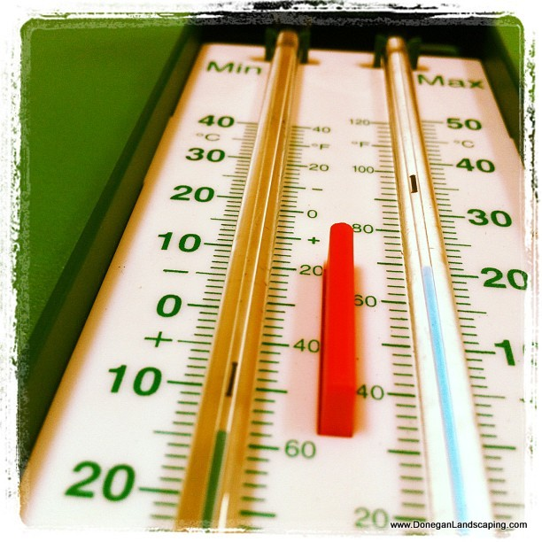 Max Min Thermometer Mercury