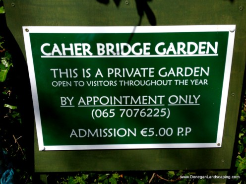caher bridge garden (7)