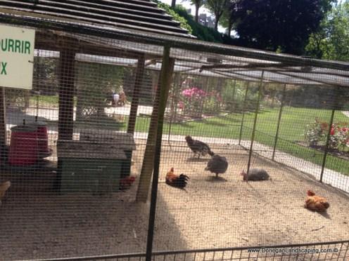 les jardins du val cocherel (9)