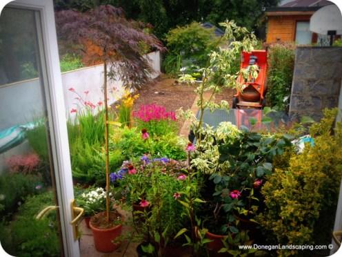 garden works, in progress (1)