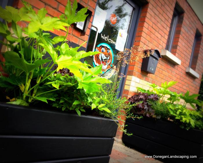 garden-planters-dublin-2