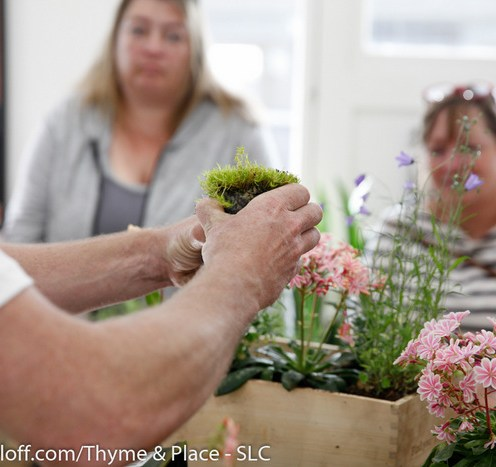 peter donegan, garden classes, thyme and place, usa (4)