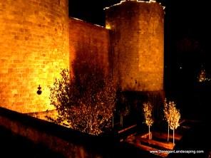 Jardin Peronne, Historial, night (1)