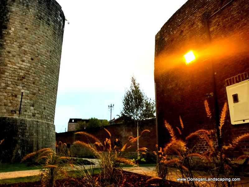 Jardin Peronne, Ireland (14)