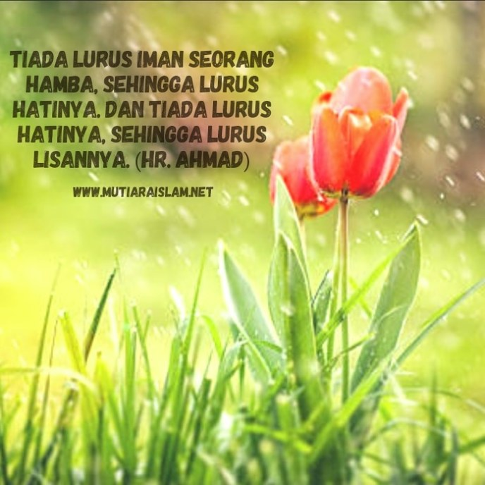 kata kata bijak islami singkat